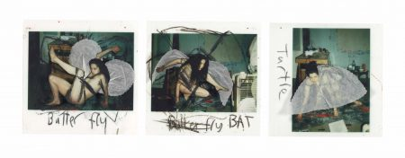 Kiki Smith-Butterfly, Bat, Turtle-2000