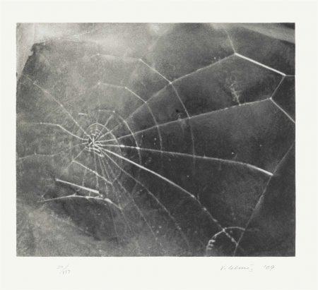 Vija Celmins-Spider Web-2009