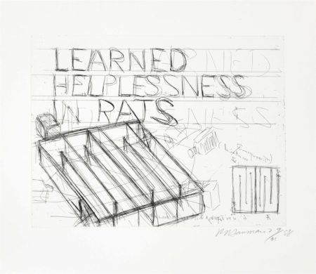 Learned Helplessness in Rats-1988