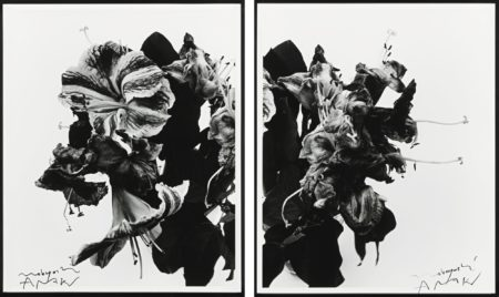 Nobuyoshi Araki-From Close To Range [Diptych]-1991