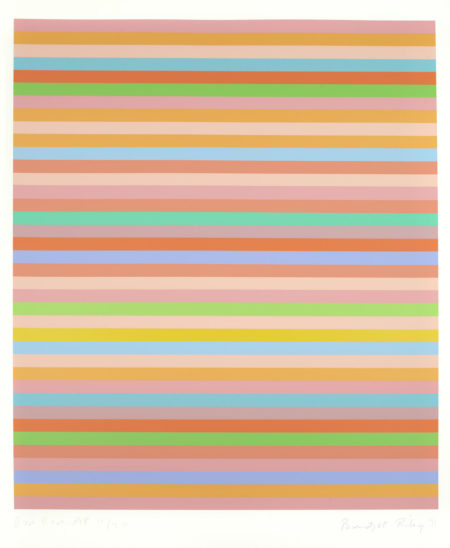 Bridget Riley-Rose Rose-2011