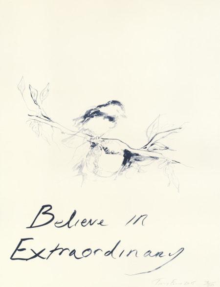 Tracey Emin-Believe in Extraordinary-2015