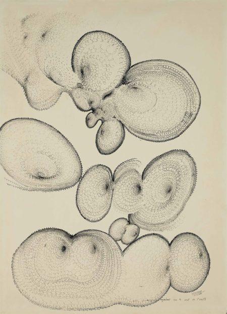 Bernard Requichot-Les champignons regardent sur le seuil de l'oreille-1960