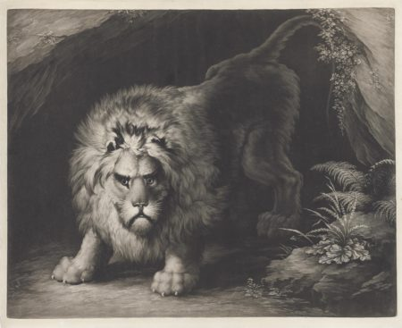 John D. Graham-After John Graham - A Lion by the mouth of a cave-1792