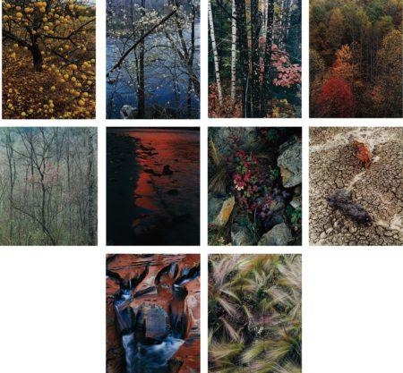 Eliot Porter-Intimate Landscapes-1979