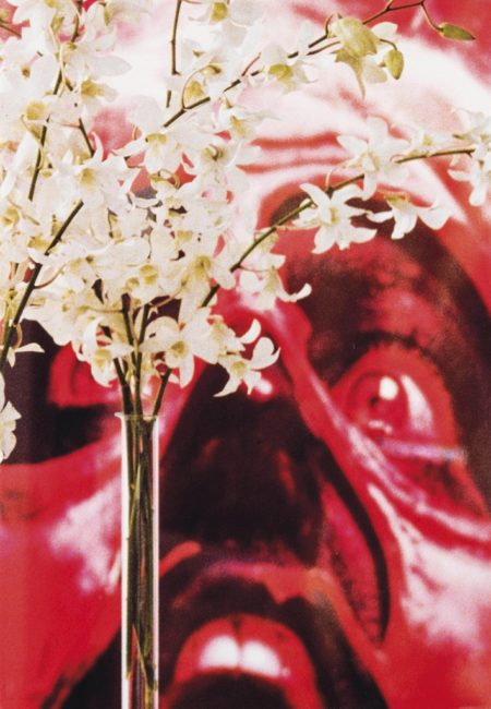 Louise Lawler-Red Face, White Flowers-2004