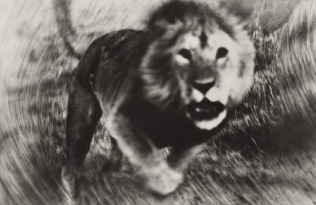 Loliondo-1964