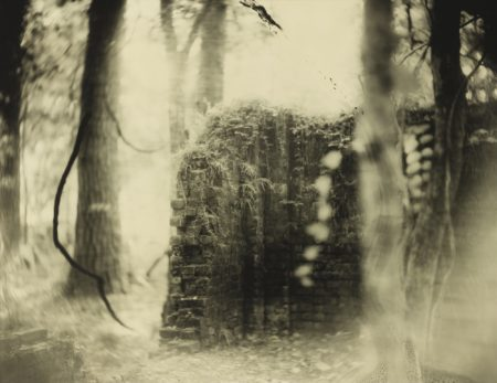 Sally Mann-Untitled (Deep South #17)-1998