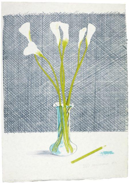 David Hockney-Lillies (Scottish Arts Council 118)-1971