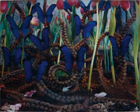 Untitled (Blue Butterflies)-1997