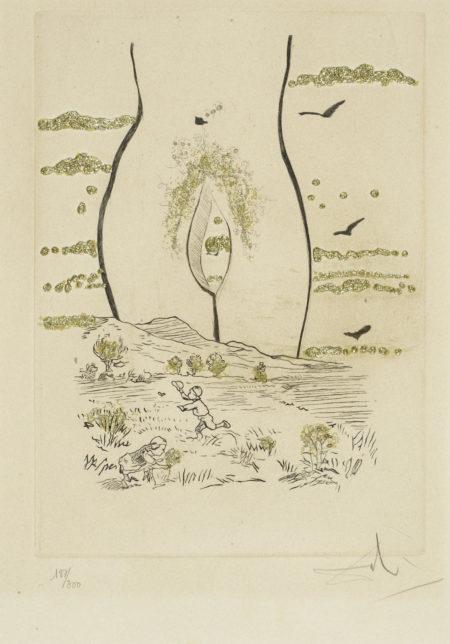 Salvador Dali-Les Amoures Jaunes (M./L. 693-702; F. 74-15)-1974