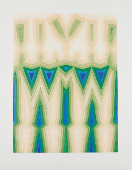 Tauba Auerbach-Fold Slice Topo II-2011