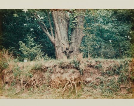 Ana Mendieta-Silueta Works In Iowa-1978