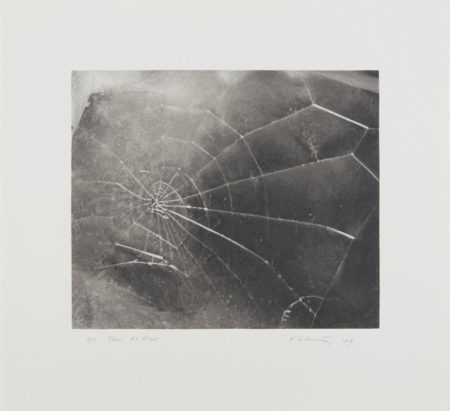 Vija Celmins-Spiderweb-2009