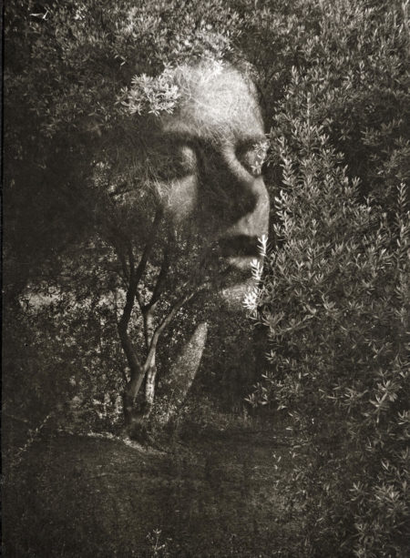 Edmund Teske-Face Lifting Amid The Olive Trees, Hollywood, California-1947
