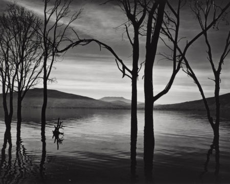 Brett Weston-Lake Patzcuaro, Mexico-1976