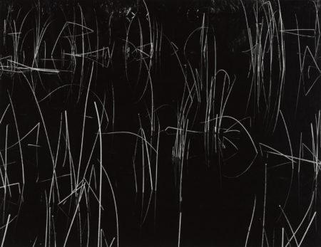 Brett Weston-Reeds, Oregon-1975