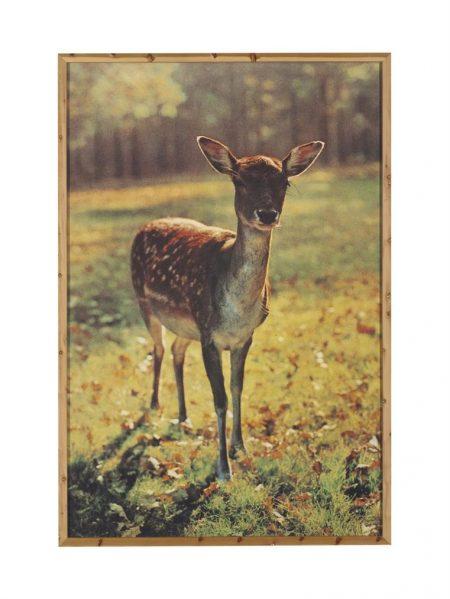 Paul McCarthy-The Bavarian Deer-1989