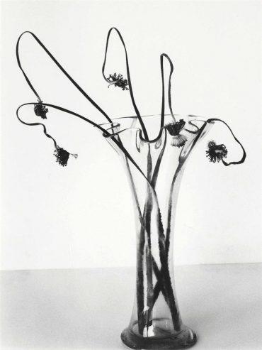 Nobuyoshi Araki-Untitled, From Sensual Flowers, 1996-1996