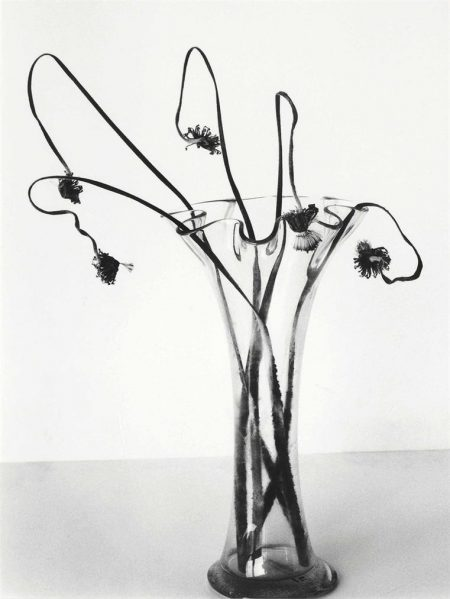 Nobuyoshi Araki-Untitled, From Sensual Flowers, 1996-1996