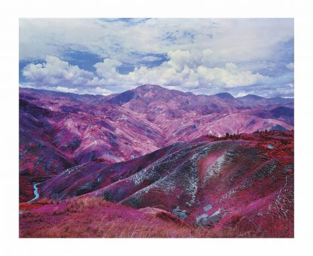 Richard Mosse-Remain In Light, 2015-2015
