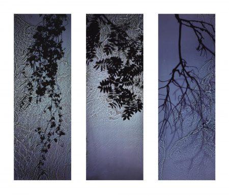 Susan Derges-Untitled, C. 1997-1997