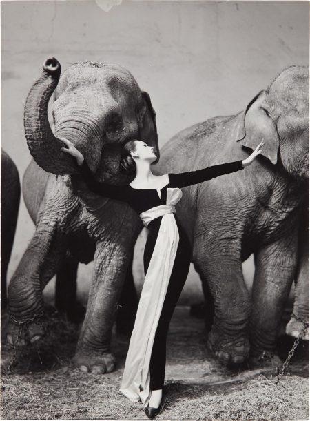 Dovima With Elephants, Evening Dress By Dior, Cirque D'Hiver, Paris, August-1955