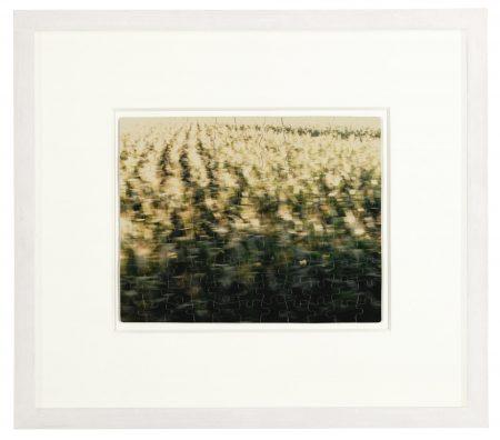 Felix Gonzalez-Torres-Untitled (Venezia)-1988