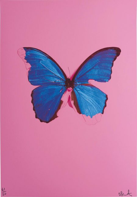 Blue Butterfly From, In The Darkest Hour There May Be Light-2006