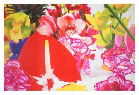 Winter Garden (Paragon Vol. III P.116-127)-2004