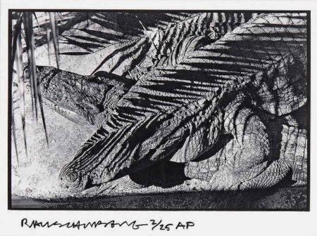 Robert Rauschenberg-Robert Rauschenberg - Untitled (Fort Myers)-1970