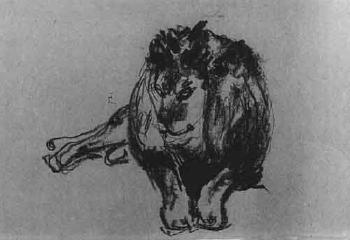 Edvard Munch-Mannlicher liegender Lowe / Male Lion Lying Down-1916
