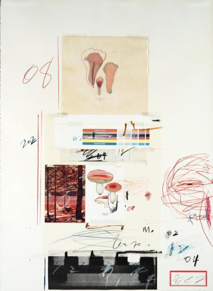 Cy Twombly-Natural History Part I-1974