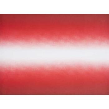 Anish Kapoor-Shadow III (Red) / Untitled 01 / Untitled 3-2009