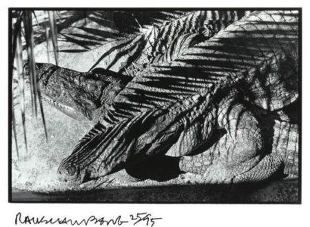 Robert Rauschenberg-Robert Rauschenberg - Ft. Myers (From Independent Curators 15th Anniversary Portfolio)-1979