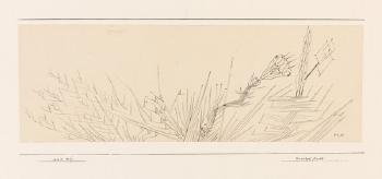 Paul Klee-Stachel Frucht-1925