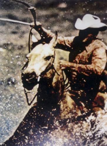 Cowboy-1984