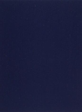 Yves Klein-Monochrome bleu IKB5-1960