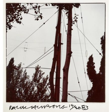 Robert Rauschenberg-Robert Rauschenberg - Studies For Chinese Summerhall (Wire & Trees)-1983