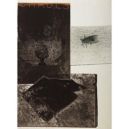 Robert Rauschenberg-Robert Rauschenberg - Razorback Bunch: Etching I-1980