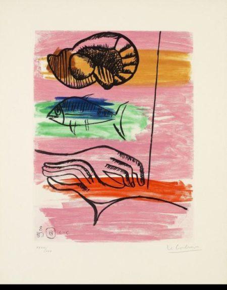 Le Corbusier-Unite, Planche 6-1953