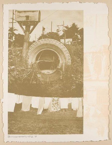 Robert Rauschenberg-Robert Rauschenberg - Rookery Mounds (Mud Dauber)-1979