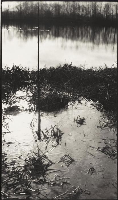 Robert Rauschenberg-Robert Rauschenberg - Portfolio I (Self-published Portfolio)-1998