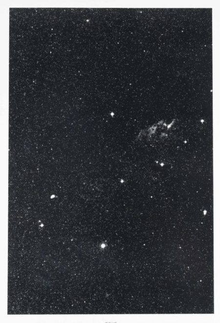 Thomas Ruff-08H 24m-35 degrees, from: Stars-1990
