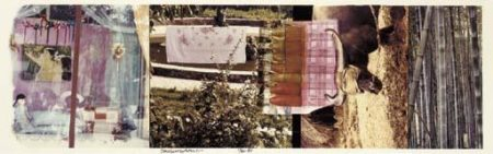 Robert Rauschenberg-Robert Rauschenberg - Studies For Chinese Summerhall V-1984