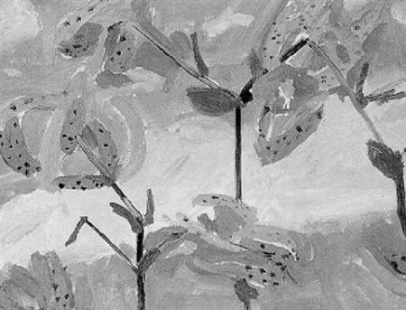 Alex Katz-Superb Lilies-1966