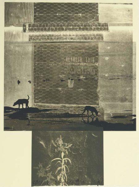 Robert Rauschenberg-Robert Rauschenberg - Lily Scent (From Eight Litographs)-1981