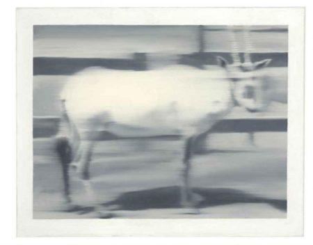 Gerhard Richter-Sabelantilope-1966