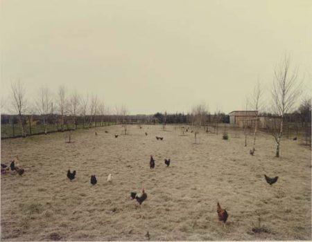 Andreas Gursky-Huhner, Krefeld-1989