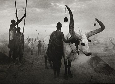 Sebastiao Salgado-Dinka Group at Pagarau Cattle Camp, Southern Sudan (Sud Sudan)-2006